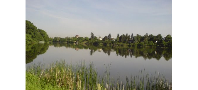 19 Czech Swimming Lakes