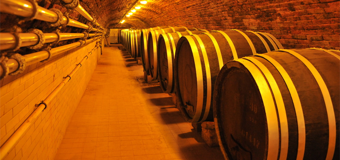 Wine Tourism in the Czech Republic