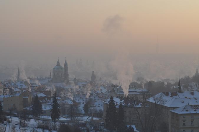 Photo no. 7. -Frosty Morning - Violetta Dotsenko