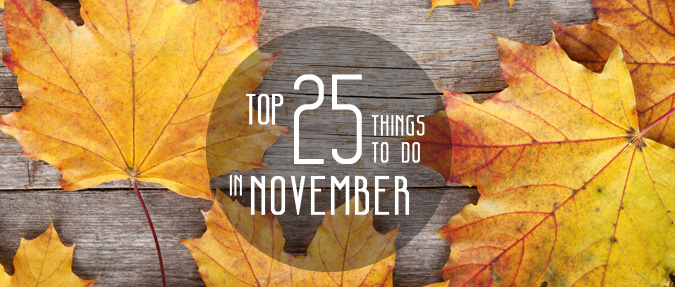 Top 25 Things to Do in November
