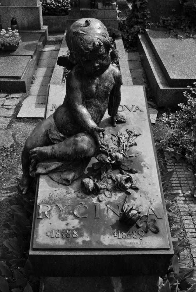 Ryčinka Maternová, Vyšehradský hřbitov 1889