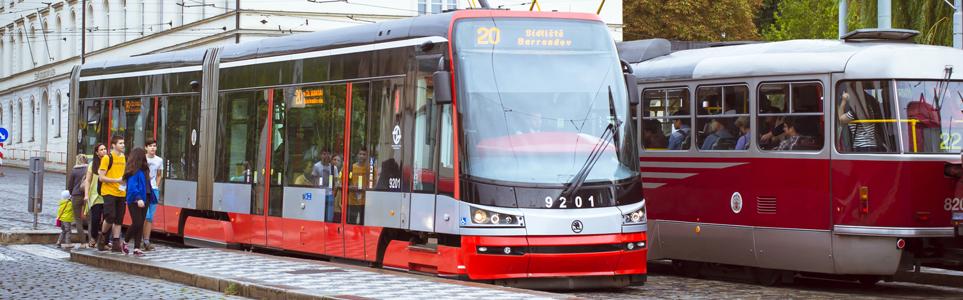 Free public transport