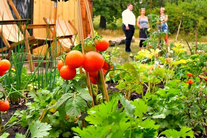 Photo: Komunitní centrum a zahrada Kotlaska / Facebook