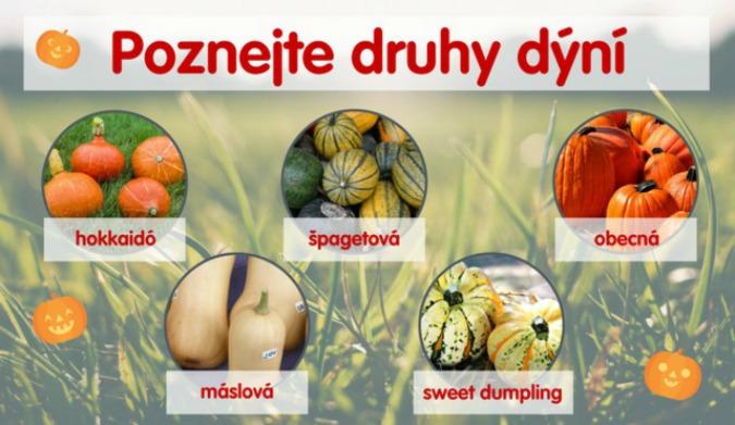 Photo: OnaDnes.cz