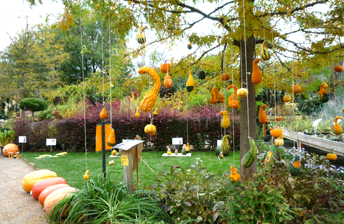 Boo halloween for kids in the czech republic prague - Ideas para decorar mi jardin ...