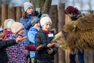Prague Zoo will offer 1-CZK entry for kids tomorrow during the teachers' strike