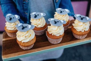 Koala cupcakes and concerts for Australia: How to support fire-relief efforts from Prague