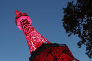 Prague's Petřín Tower will turn red in support of World Hemophilia Day