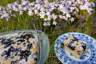 In the Czech kitchen: Bublanina, a summertime berry sponge cake