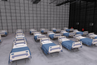 Czech military to set up out-of-hospital beds for COVID-19 patients