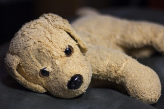 Czech police catch man in South Bohemia walking a stuffed dog in attempt to skirt curfew