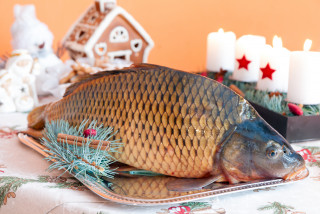 Why do Czechs eat carp for Christmas?