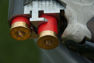 Revised gun law allowing silencers and night scopes approved by Czech Senate