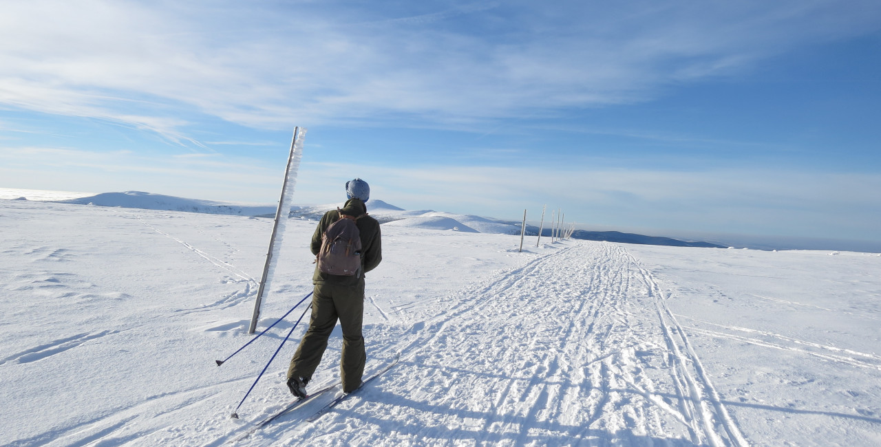 Cross-country skiing for beginners: where and how to practice this popular Czech winter sport