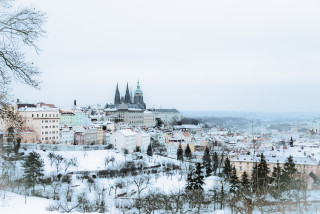 Czech morning news in brief: top stories for Jan. 8, 2021