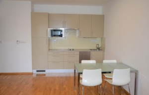 Apartment for rent, 2+kk - 1 bedroom, 55m<sup>2</sup>