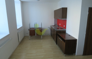 Apartment for rent, 1+KK - Studio, 30m<sup>2</sup>