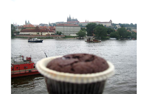 https://www.expats.cz/resources/prague-food-fest-20.jpg